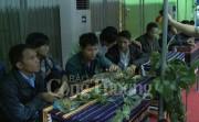 Quảng Nam: Phiên chợ sâm Ngọc Linh thu được trên 3 tỷ đồng