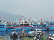 Đà Nẵng: Thiếu lao động, lo tàu thuyền nằm bờ