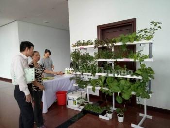 Đà Nẵng: Tạo cơ chế khuyến khích đầu tư phát triển nông nghiệp công nghệ cao