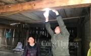 Quảng Bình: Điện về bản heo hút sau hàng chục năm chờ đợi