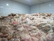 Đà Nẵng xử phạt đơn vị chứa kho đông lạnh 15 tấn nội tạng heo, bò thối