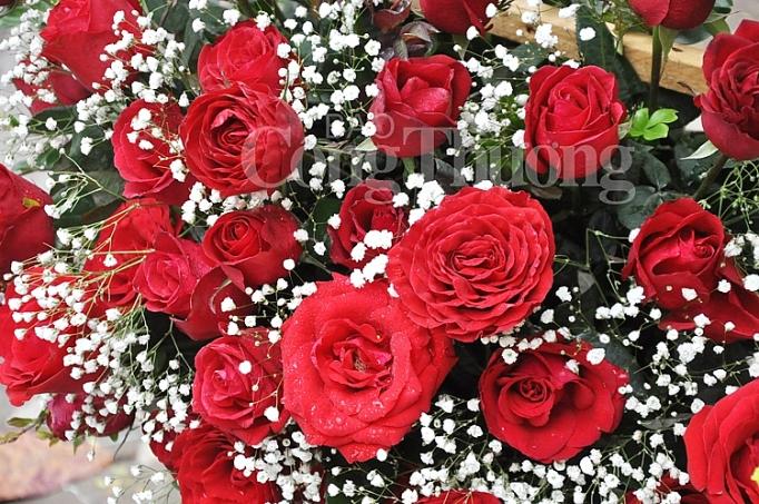phong phu thi truong qua tang valentine