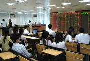 Phân bảng cổ phiếu UPCoM theo quy mô vốn