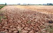 Định giá tổn thất để chủ động ứng phó với biến đổi khí hậu