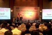 Doanh nghiệp Việt Nam - Ai Cập sẽ hiện thực hóa mục tiêu 1 tỷ USD