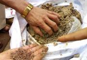 Tăng cường chống buôn lậu phân bón và thuốc bảo vệ thực vật