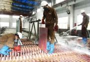 Lào Cai phát triển công nghiệp theo hướng hiện đại và bền vững