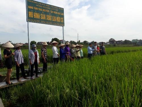 """Nông sản hữu cơ Quế Lâm: Thay đổi nhận thức của người dân về một nền nông nghiệp """"sạch"""""""