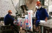 Supe Lâm Thao: Phát triển trở thành trung tâm phân bón lớn của cả nước