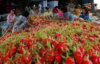 756 xe nong san dang cho thong quan tai cac cua khau khu vuc bien gioi phia bac