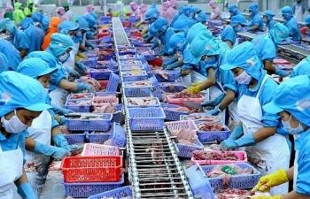 doanh nghiep thuy san de xuat giai phap ve tai chinh vuot qua covid 19