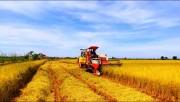 Thúc đẩy và mở rộng thị trường xuất khẩu nông sản