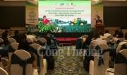 DN phải đảm bảo tiêu chuẩn và chất lượng để thâm nhập thị trường xuất khẩu