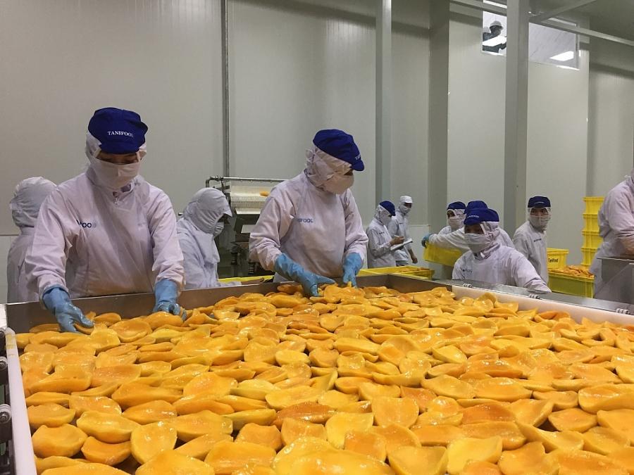Nông sản xuất khẩu thông qua chế biến mới đạt 20% đến 30%