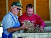 Sâm Wisconsin Hoa Kỳ - Đặc sản nông sản cao cấp