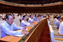 Quốc hội thông qua Dự thảo Luật Đo đạc và bản đồ