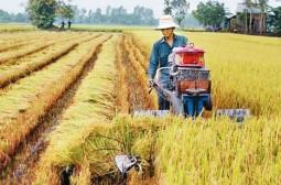 Giải mã xu hướng lựa chọn vật tư nông nghiệp của nông dân Việt Nam