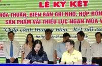 khai mac tuan le vai thieu luc ngan tai ha noi nam 2019
