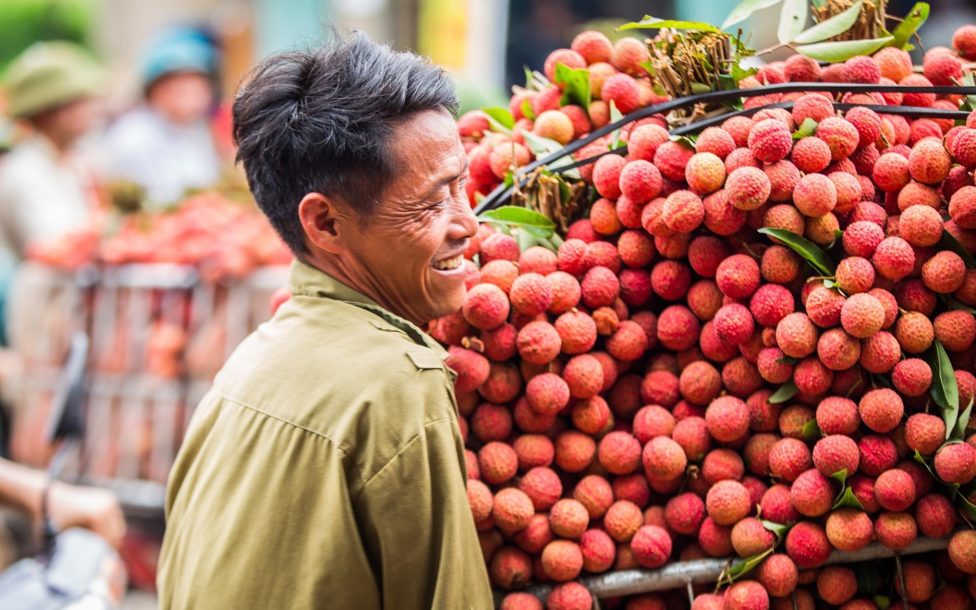 Bắc Giang đẩy mạnh xúc tiến tiêu thụ vải thiều năm 2021
