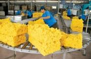 7 tháng, xuất khẩu nông lâm thủy sản đạt 20,25 tỷ USD