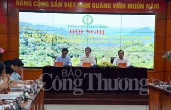 xuat khau go va lam san 6 thang dau nam tang truong vuot bac