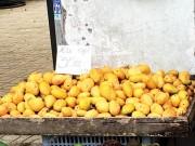 Bác tin đồn xoài hạt nilon xuất xứ Trung Quốc