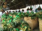Khai mạc Tuần lễ nhãn lồng Hưng Yên tại Hà Nội năm 2017