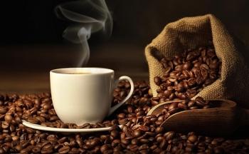 Giá cà phê hôm nay 19/2: Khởi sắc những ngày đầu năm, chạm mốc 32 triệu đồng/tấn