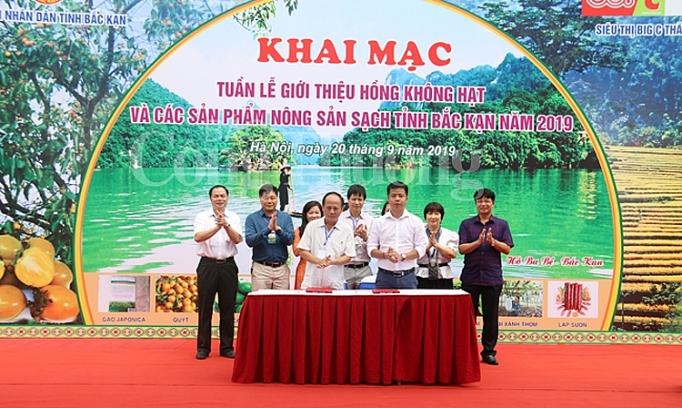 hong khong hat bac kan lan dau tien ra mat thi truong thu do