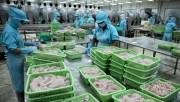Sẽ triển khai các biện pháp khắc phục thẻ vàng của EU đối với hải sản Việt Nam