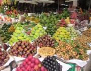 Tiếp tục triển khai thực hiện Đề án thí điểm quản lý cửa hàng kinh doanh trái cây