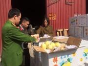 Hà Nội thu giữ 4 tấn quả lê Trung Quốc nhập lậu