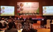 Giải quyết an toàn thực phẩm thông qua chuỗi giá trị nông nghiệp toàn cầu