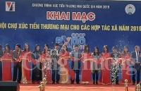 250 gian hang tham gia hoi cho xuc tien thuong mai cho cac hop tac xa nam 2019