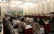 Luật Đơn vị hành chính- kinh tế đặc biệt: Rất cần thiết cho Việt Nam