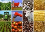 Việt Nam-Ba Lan: Cải thiện thương mại song phương trong lĩnh vực nông nghiệp, thực phẩm