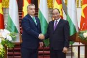 Đưa quan hệ Việt Nam – Hungary đi vào chiều sâu và hiệu quả