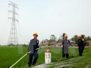 Đẩy nhanh tiến độ giải phóng mặt bằng các dự án lưới điện