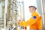 Công ty CP Phân phối Khí thấp áp Dầu khí Việt Nam (PV GAS D): Khẳng định vai trò tiên phong