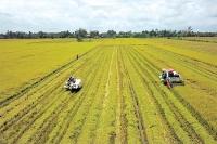 du an better life farming tiem nang canh tac lon cho cac nong ho nho