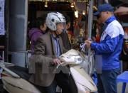 Người dân đi lễ Phủ Tây Hồ đầu xuân được trông xe miễn phí