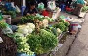 Hà Nội: Giá thực phẩm rau xanh trở lại ổn định sau Tết