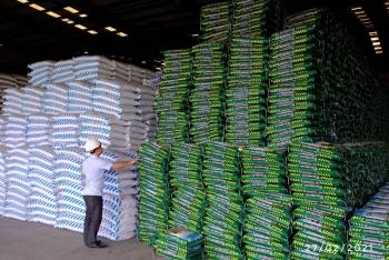 DAP Đình Vũ: Đáp ứng đủ nhu cầu phân bón cho thị trường trong nước