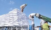 Quy định về đấu giá 89.500 tấn đường nhập khẩu năm 2017