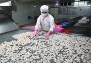 FTA và cơ hội của ngành tôm Việt Nam