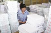 Doanh nghiệp giấy trước FTA: Tồn tại hay không tồn tại?