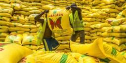 Châu Phi chi 7 tỷ USD mỗi năm để nhập khẩu gạo