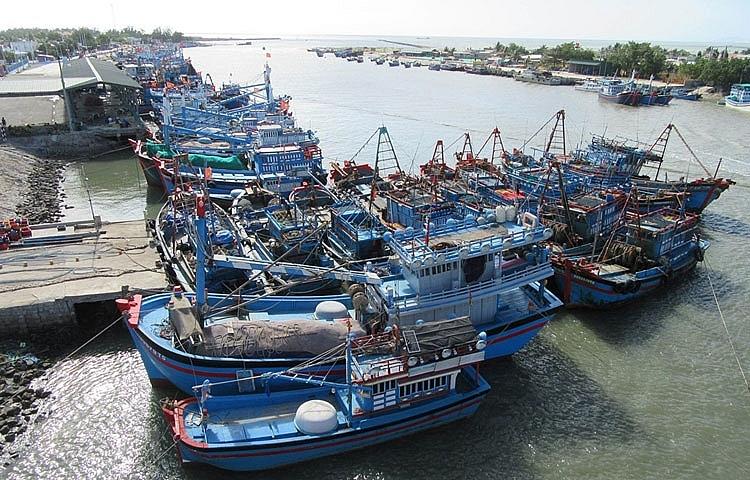 Quyết tâm chấm dứt tình trạng tàu cá vi phạm IUU vào năm 2022