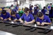 53% tổng số dòng thuế NK về 0% khi Hiệp định Việt Nam-EAEU có hiệu lực