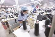 Nền kinh tế trước thách thức FTA thế hệ mới
